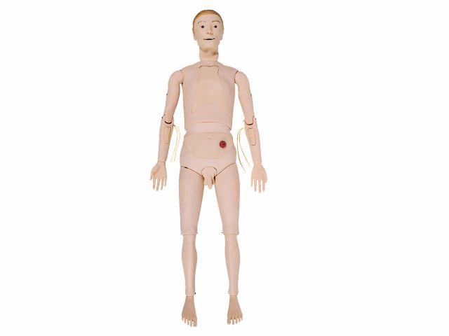 Manequim Bissexual Adulto - TZJ-0502 - Anatomic